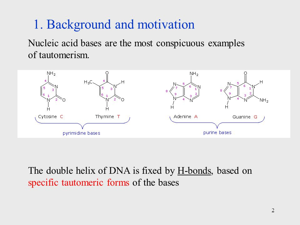 2 Nucleic acid bases are the most conspicuous examples of tautomerism.