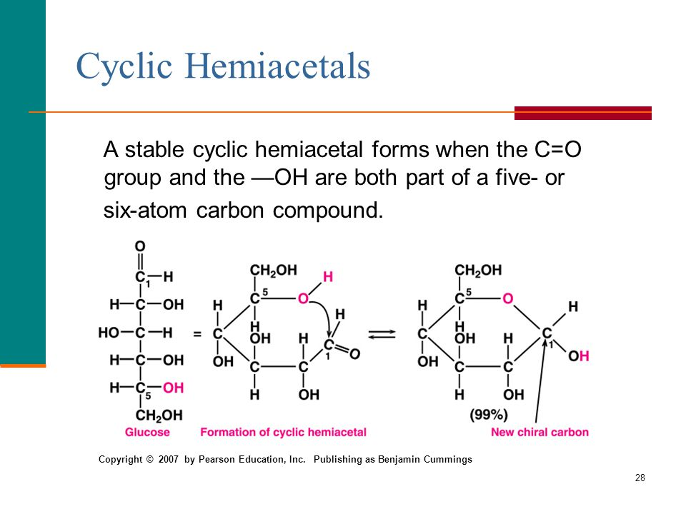 28 Cyclic Hemiacetals A stable cyclic hemiacetal forms when the C=O group and the —OH are both part of a five- or six-atom carbon compound. Copyright