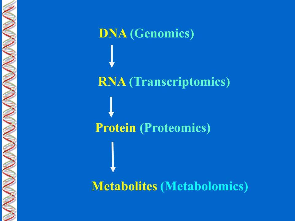 DNA (Genomics) RNA (Transcriptomics) Protein (Proteomics) Metabolites (Metabolomics)