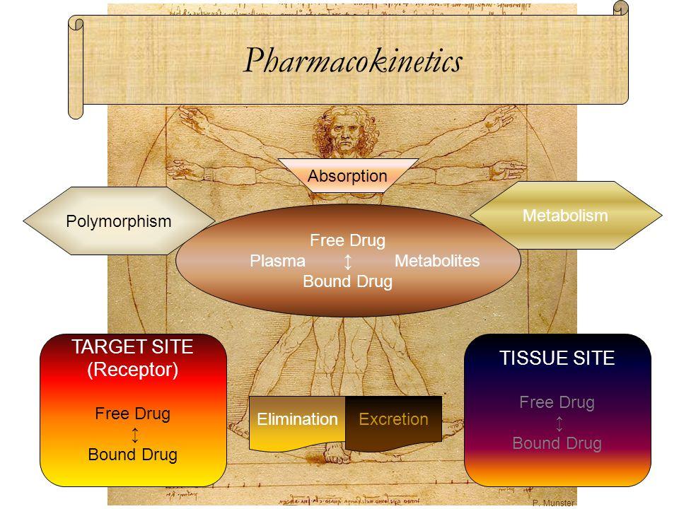 Free Drug Plasma ↕ Metabolites Bound Drug TARGET SITE (Receptor) Free Drug ↕ Bound Drug TISSUE SITE Free Drug ↕ Bound Drug Metabolism Absorption Pharm