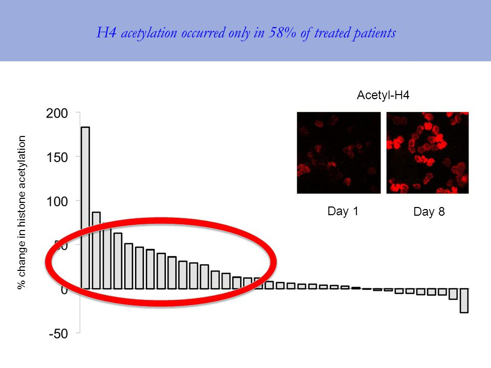 H4 acetylation occurred only in 58% of treated patients % change in histone acetylation Acetyl-H4 Day 1 Day 8