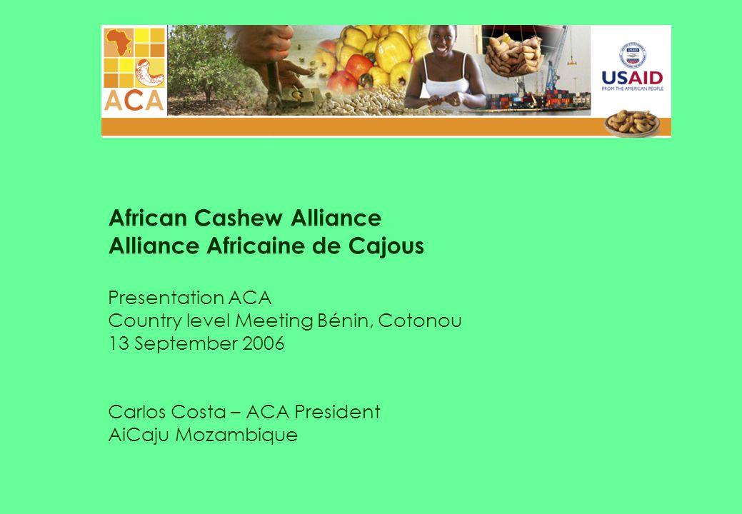 African Cashew Alliance Alliance Africaine de Cajous Presentation ACA Country level Meeting Bénin, Cotonou 13 September 2006 Carlos Costa – ACA President AiCaju Mozambique