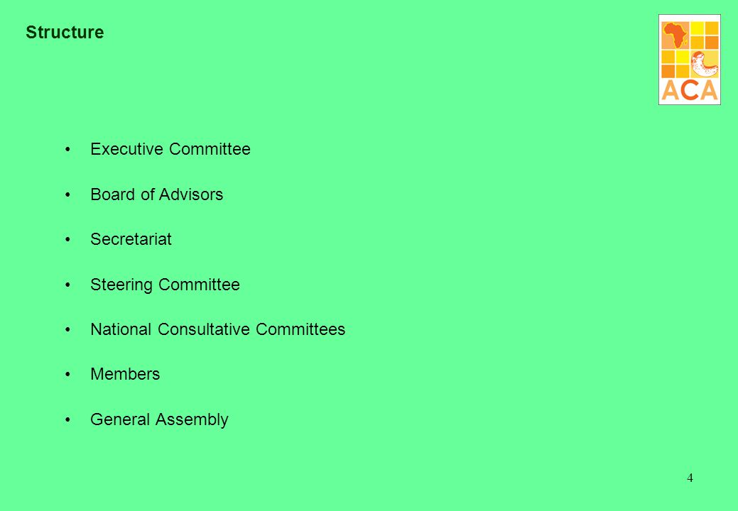 4 Structure Executive Committee Board of Advisors Secretariat Steering Committee National Consultative Committees Members General Assembly