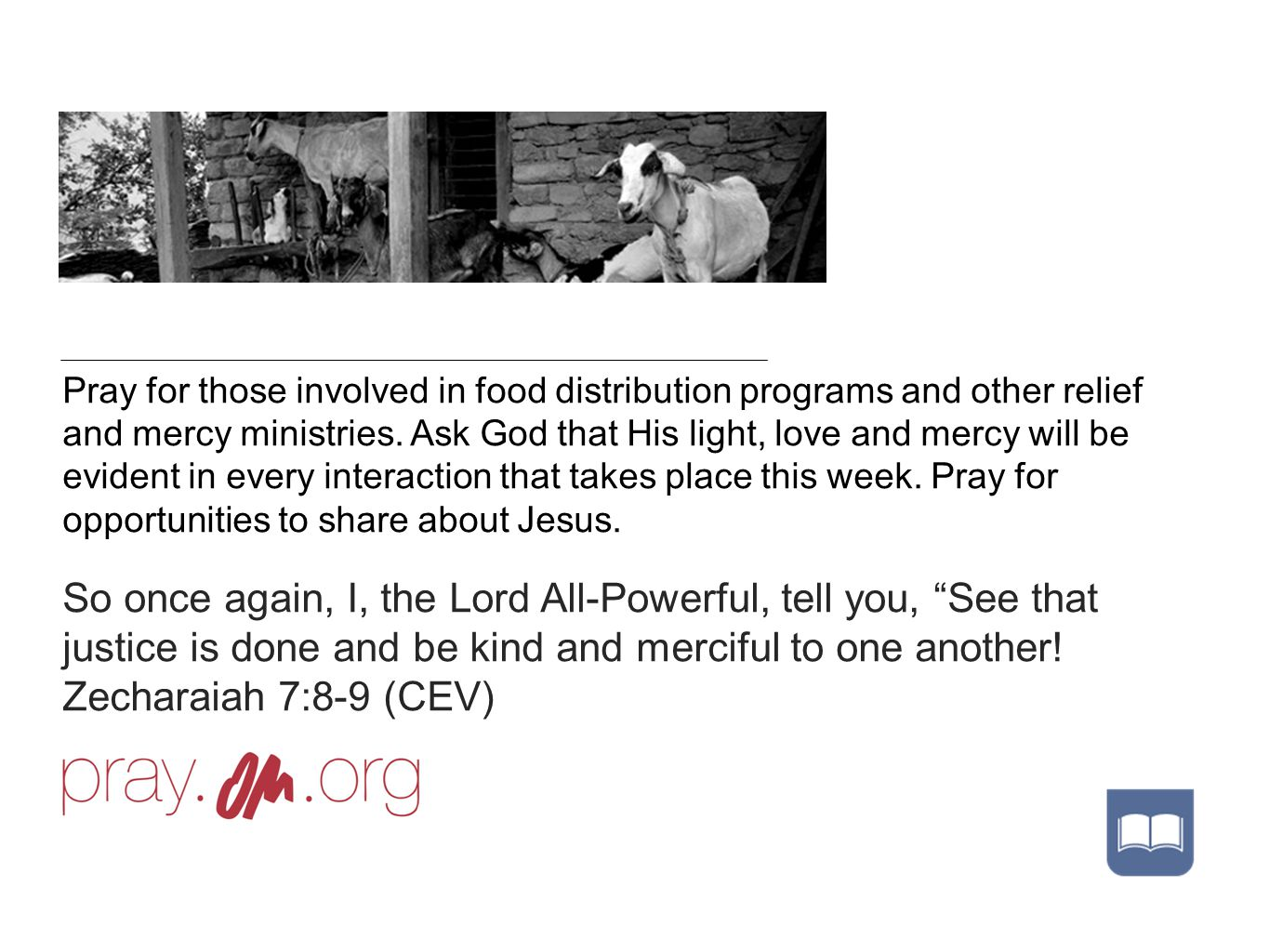 Pray for those involved in food distribution programs and other relief and mercy ministries.