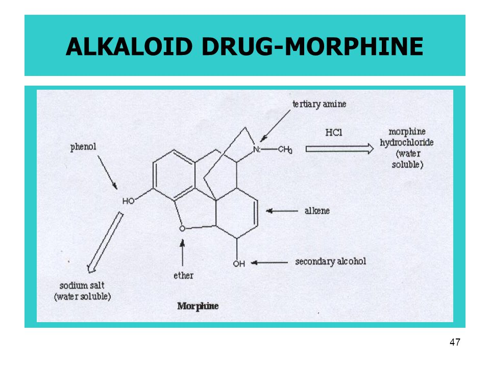 47 ALKALOID DRUG-MORPHINE