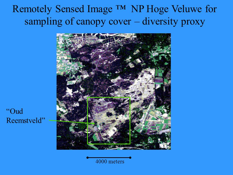"Remotely Sensed Image ™ NP Hoge Veluwe for sampling of canopy cover – diversity proxy ""Oud Reemstveld"" 4000 meters"