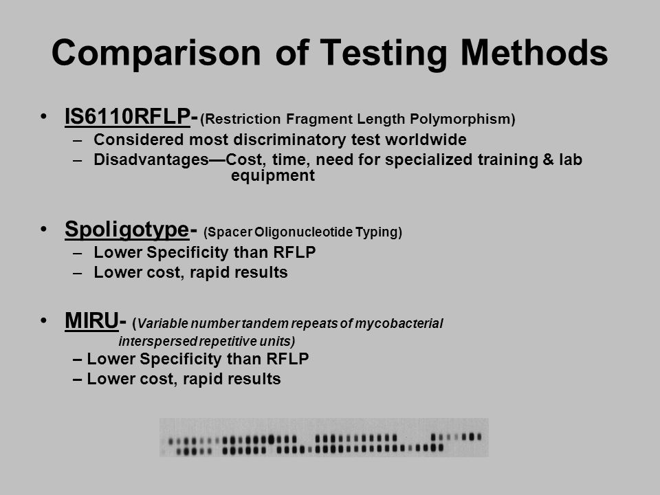 Comparison of Testing Methods IS6110RFLP- (Restriction Fragment Length Polymorphism) –Considered most discriminatory test worldwide –Disadvantages—Cost, time, need for specialized training & lab equipment Spoligotype- (Spacer Oligonucleotide Typing) –Lower Specificity than RFLP –Lower cost, rapid results MIRU- ( Variable number tandem repeats of mycobacterial interspersed repetitive units) – Lower Specificity than RFLP – Lower cost, rapid results