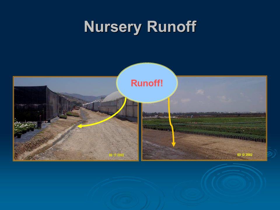 Nursery Runoff Runoff!
