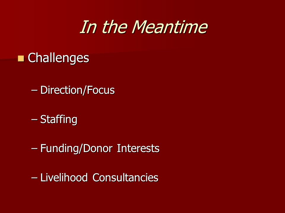 In the Meantime Challenges Challenges –Direction/Focus –Staffing –Funding/Donor Interests –Livelihood Consultancies