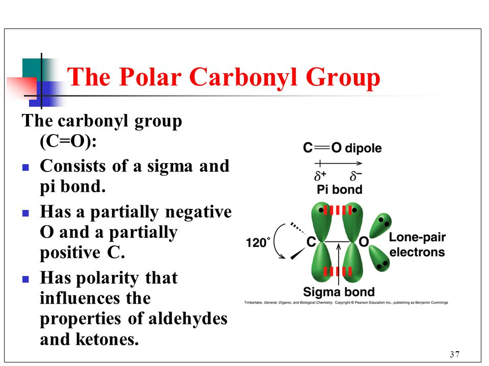 37 The Polar Carbonyl Group The carbonyl group (C=O): Consists of a sigma and pi bond. Has a partially negative O and a partially positive C. Has pola