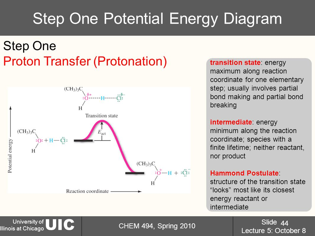 UIC University of Illinois at Chicago CHEM 494, Spring 2010 Slide Lecture 5: October 8 44 Step One Potential Energy Diagram transition state: energy maximum along reaction coordinate for one elementary step; usually involves partial bond making and partial bond breaking intermediate: energy minimum along the reaction coordinate; species with a finite lifetime; neither reactant, nor product Hammond Postulate: structure of the transition state looks most like its closest energy reactant or intermediate Step One Proton Transfer (Protonation)