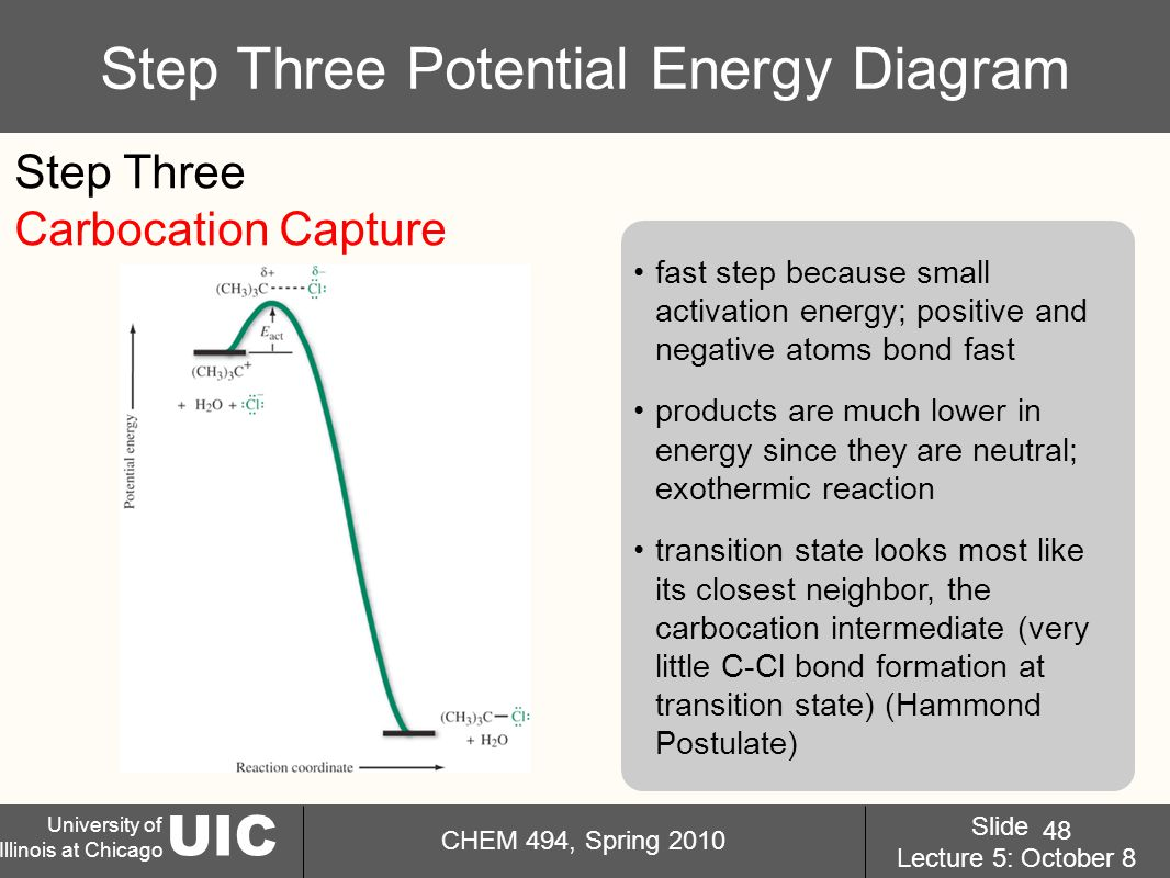 UIC University of Illinois at Chicago CHEM 494, Spring 2010 Slide Lecture 5: October 8 48 Step Three Potential Energy Diagram fast step because small activation energy; positive and negative atoms bond fast products are much lower in energy since they are neutral; exothermic reaction transition state looks most like its closest neighbor, the carbocation intermediate (very little C-Cl bond formation at transition state) (Hammond Postulate) Step Three Carbocation Capture