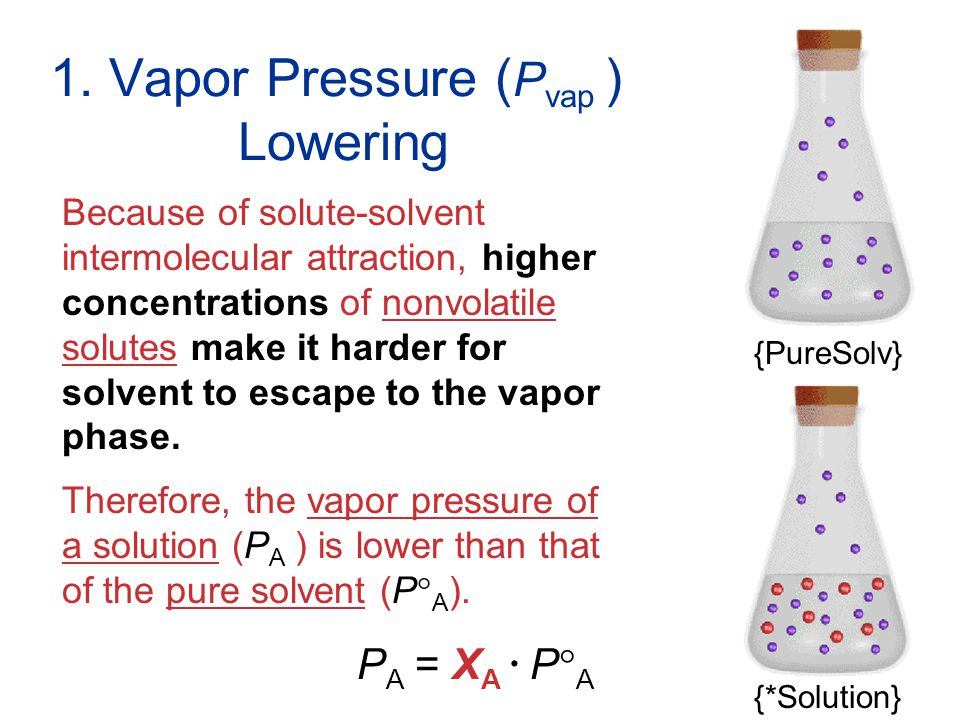 Solutions 1. Vapor Pressure ( P vap ) Lowering Because of solute-solvent intermolecular attraction, higher concentrations of nonvolatile solutes make