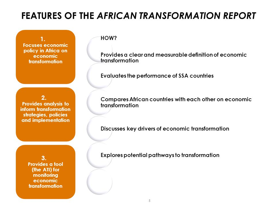 FEATURES OF THE AFRICAN TRANSFORMATION REPORT 1.