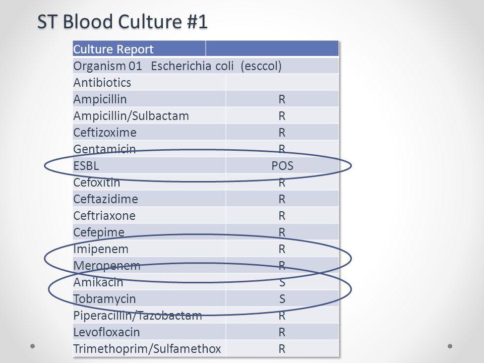ST Blood Culture #1