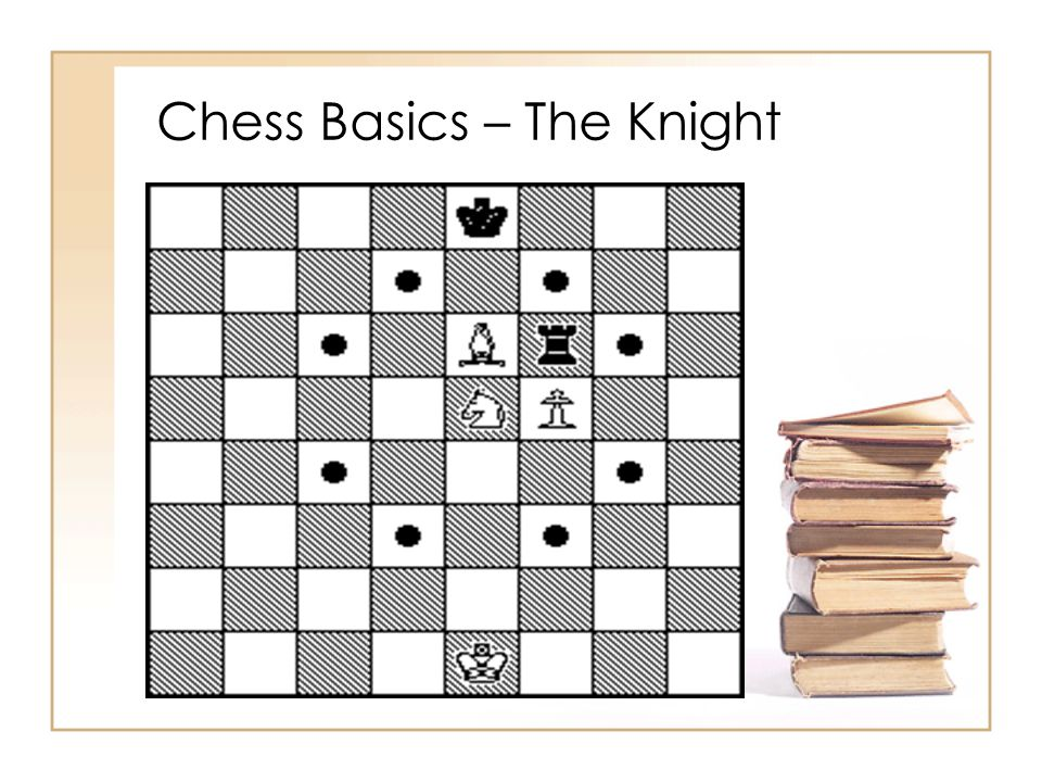Chess Basics – The Knight