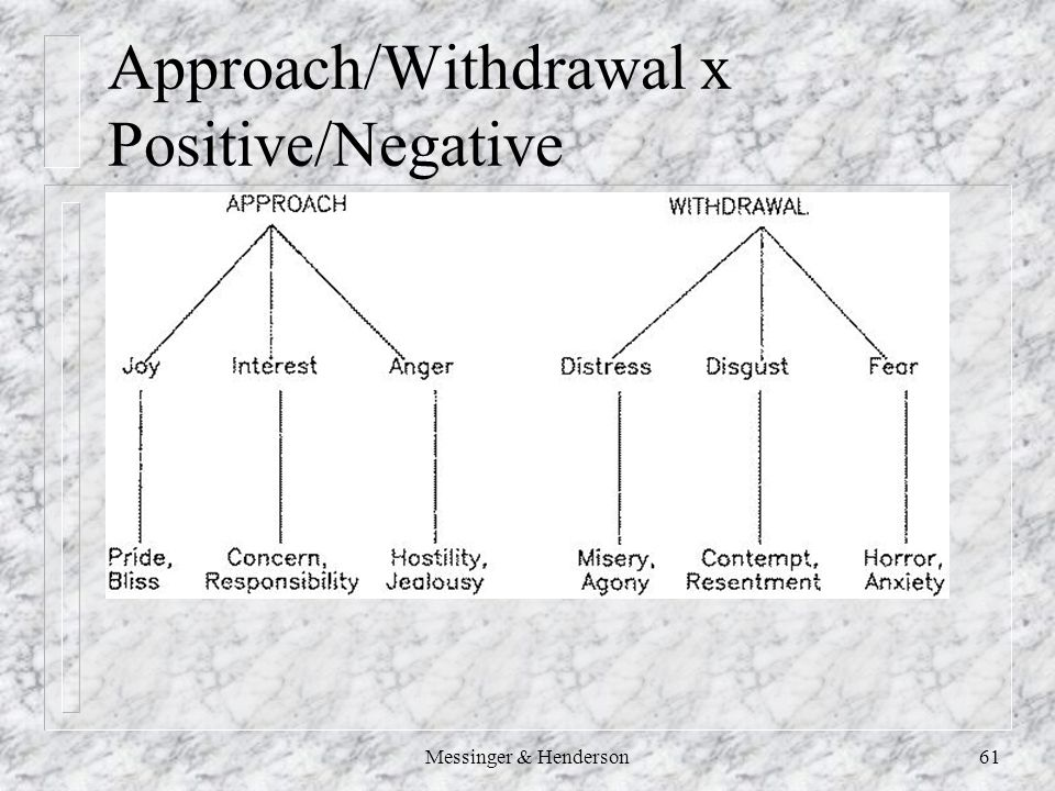 Messinger & Henderson61 Approach/Withdrawal x Positive/Negative