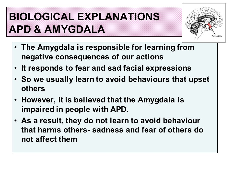 BIOLOGICAL EXPLANATIONS APD & AMYGDALA The Amygdala is responsible for learning from negative consequences of our actions It responds to fear and sad facial expressions So we usually learn to avoid behaviours that upset others However, it is believed that the Amygdala is impaired in people with APD.