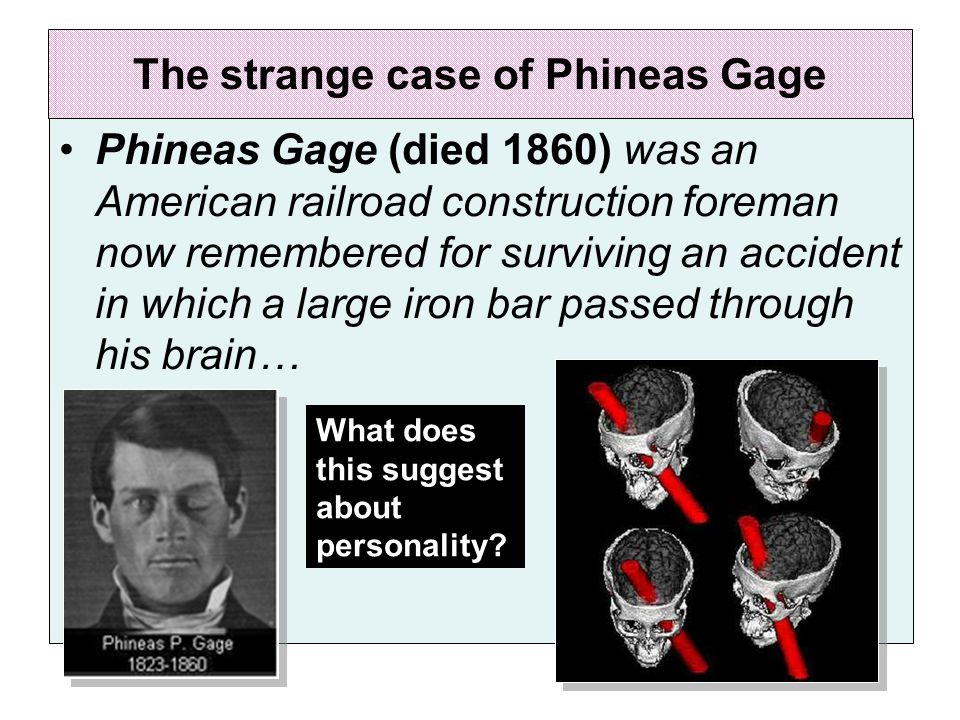 The strange case of Phineas Gage Phineas Gage (died 1860) was an American railroad construction foreman now remembered for surviving an accident in which a large iron bar passed through his brain… What does this suggest about personality