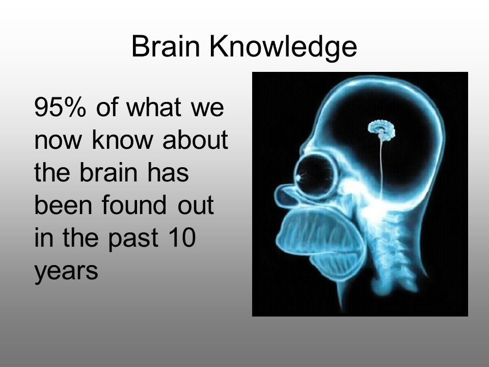 Brain Knowledge 95% of what we now know about the brain has been found out in the past 10 years