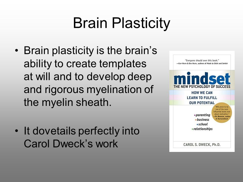 Brain Plasticity Brain plasticity is the brain's ability to create templates at will and to develop deep and rigorous myelination of the myelin sheath.