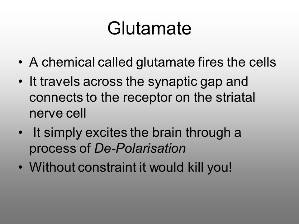 Glutamate A chemical called glutamate fires the cells It travels across the synaptic gap and connects to the receptor on the striatal nerve cell It simply excites the brain through a process of De-Polarisation Without constraint it would kill you!