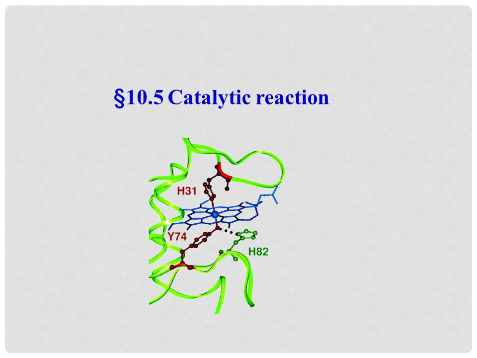 §10.5 Catalytic reaction