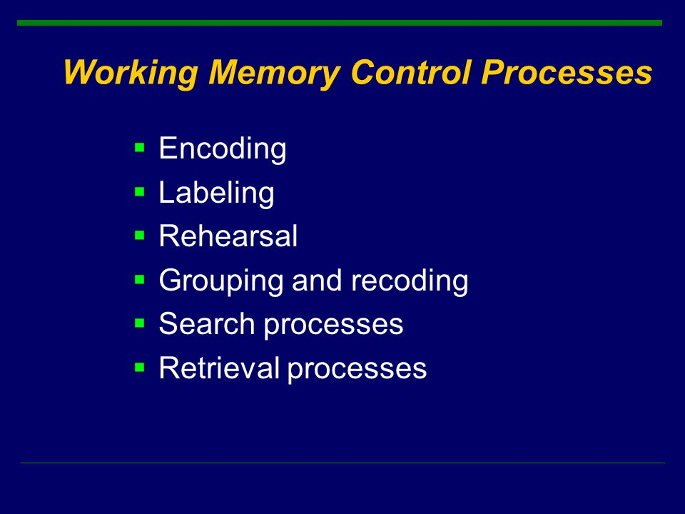 Working Memory Control Processes  Encoding  Labeling  Rehearsal  Grouping and recoding  Search processes  Retrieval processes