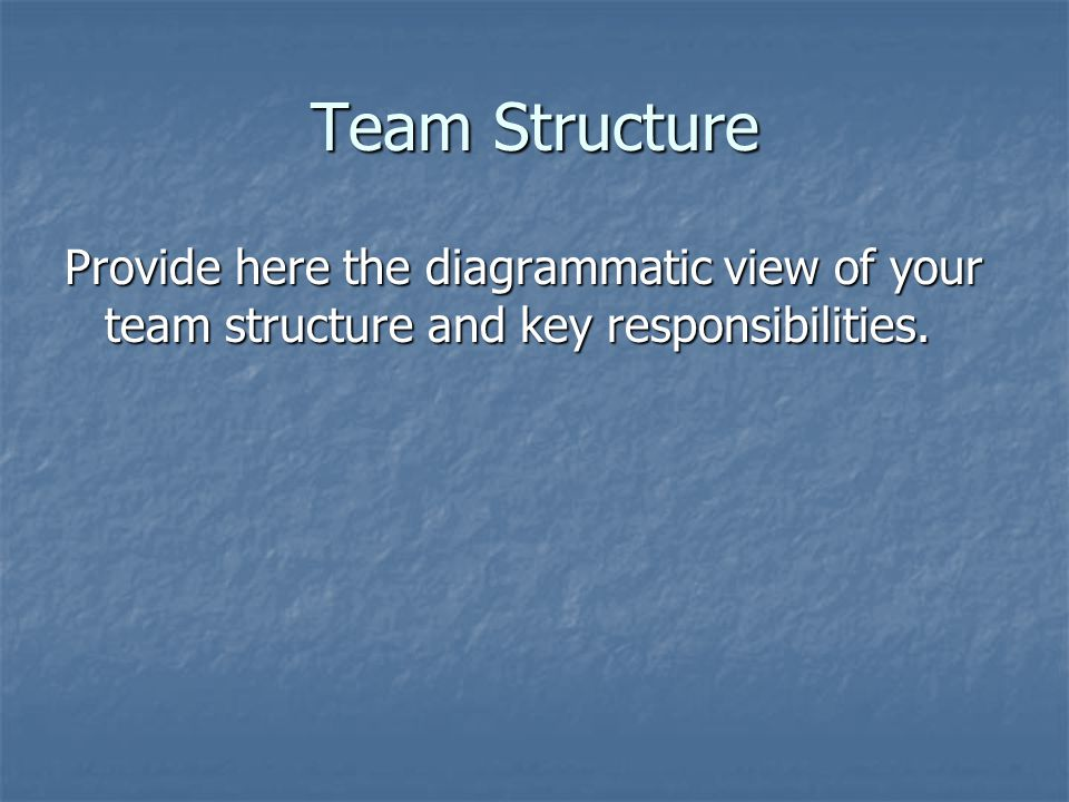 Team Structure Provide here the diagrammatic view of your team structure and key responsibilities.