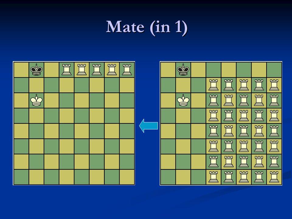 Mate (in 1)