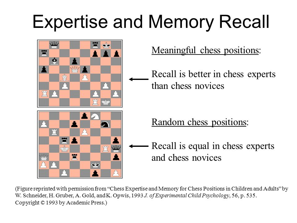 Meaningful chess positions: Recall is better in chess experts than chess novices Random chess positions: Recall is equal in chess experts and chess novices Expertise and Memory Recall (Figure reprinted with permission from Chess Expertise and Memory for Chess Positions in Children and Adults by W.
