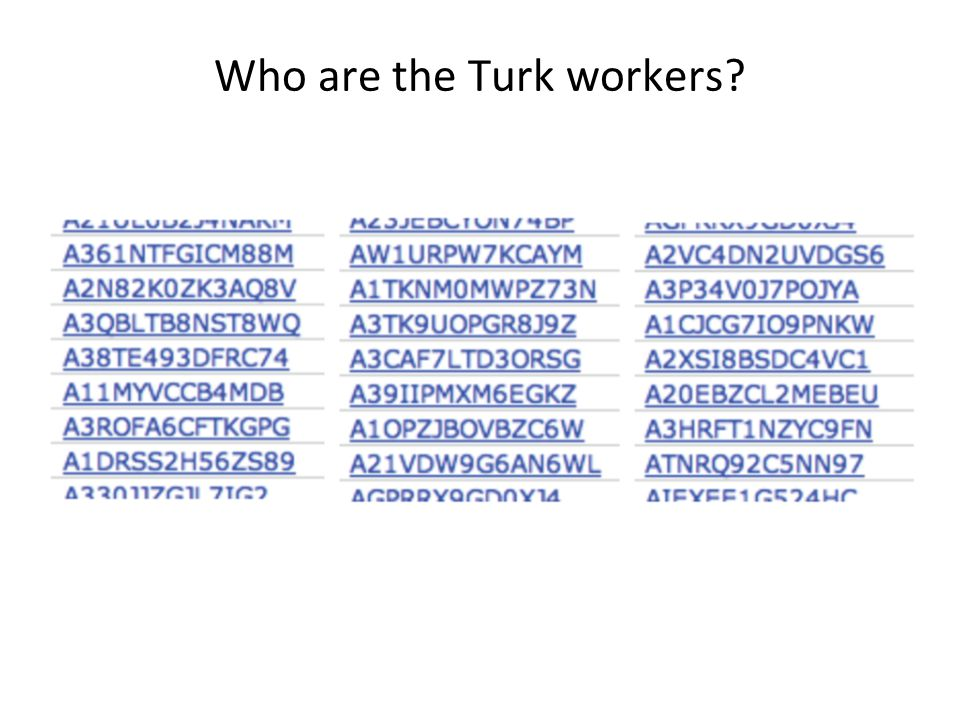 Who are the Turk workers