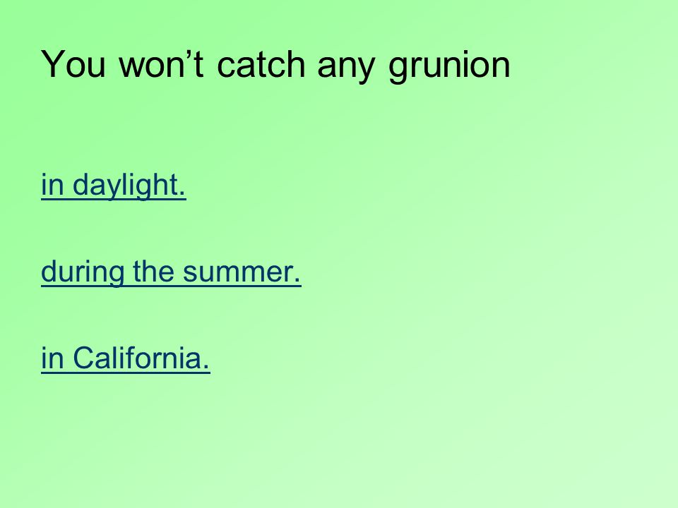You won't catch any grunion in daylight. during the summer. in California.