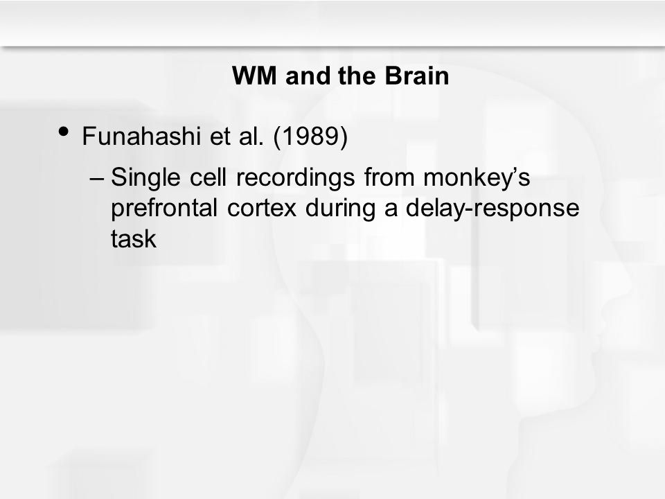 WM and the Brain Funahashi et al. (1989) –Single cell recordings from monkey's prefrontal cortex during a delay-response task