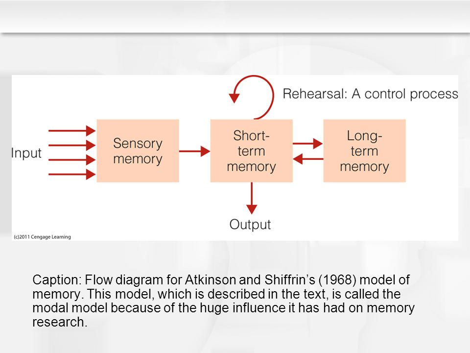 Caption: Flow diagram for Atkinson and Shiffrin's (1968) model of memory. This model, which is described in the text, is called the modal model becaus