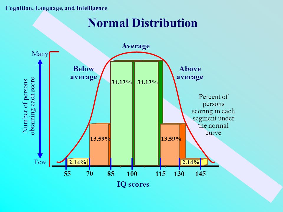 Cognition, Language, and Intelligence Normal Distribution 2.14% 13.59% 34.13% Below average Average Above average 70 8511513014555100 Few Number of persons obtaining each score Many Percent of persons scoring in each segment under the normal curve IQ scores