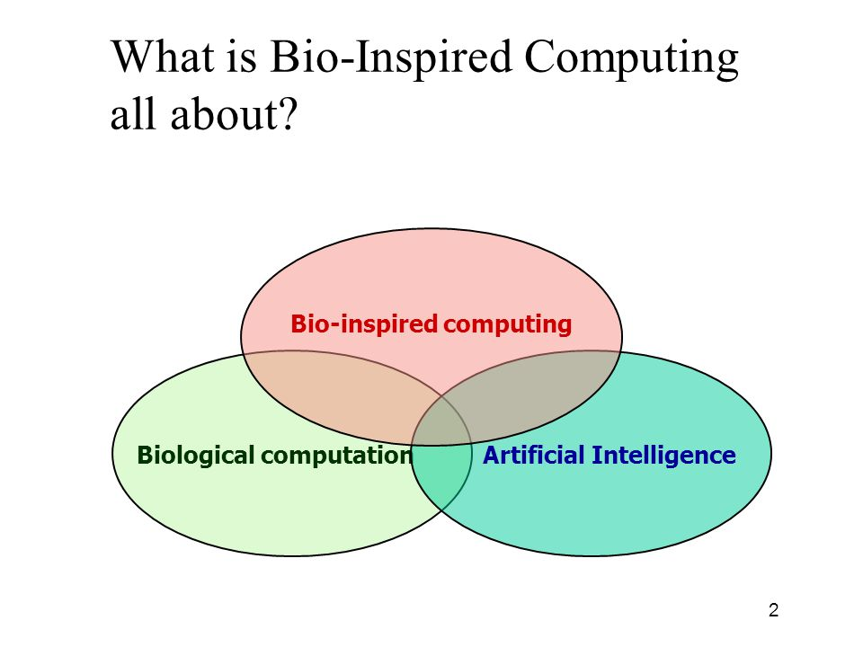 Bio-Inspired Computing Overview & Biased History Based on presentation by Netta Cohen from University of Leeds