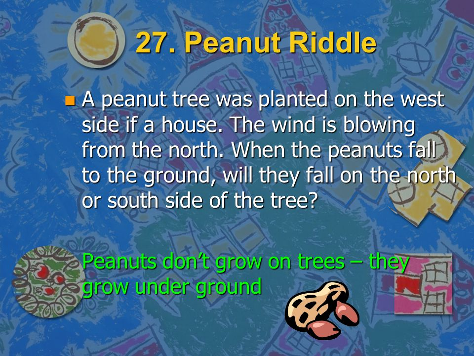 27. Peanut Riddle n A peanut tree was planted on the west side if a house. The wind is blowing from the north. When the peanuts fall to the ground, wi
