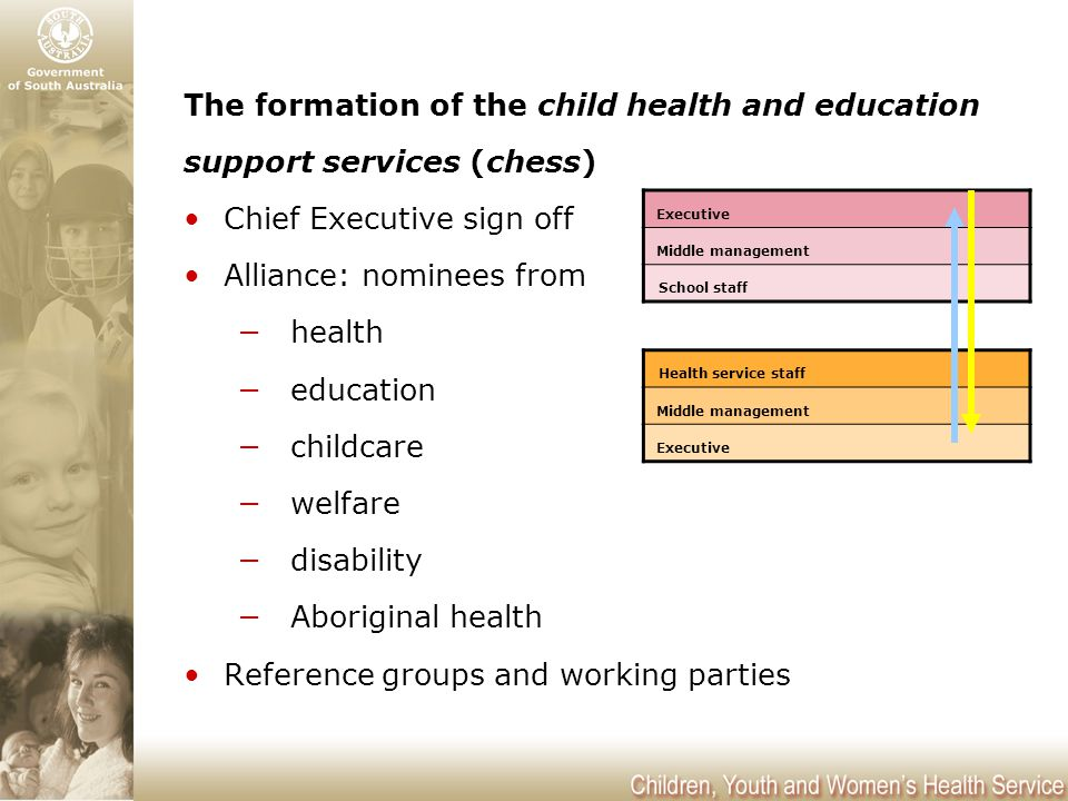 The formation of the child health and education support services (chess) Chief Executive sign off Alliance: nominees from −health −education −childcare −welfare −disability −Aboriginal health Reference groups and working parties Executive Middle management School staff Health service staff Middle management Executive