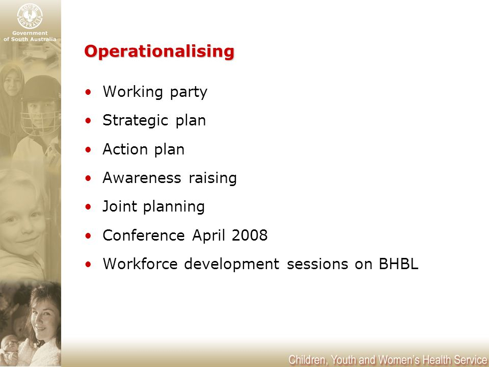 Operationalising Working party Strategic plan Action plan Awareness raising Joint planning Conference April 2008 Workforce development sessions on BHBL
