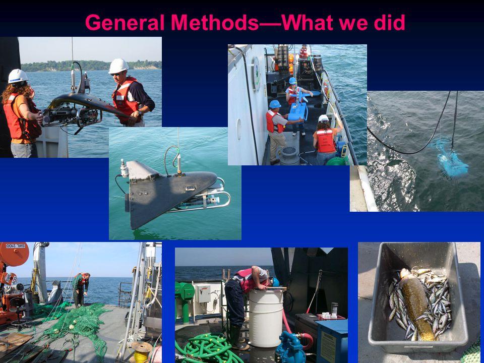 General Methods—What we did