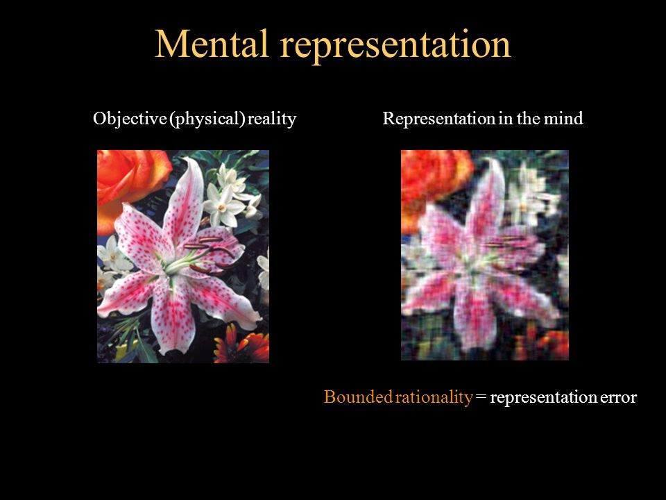 Mental representation (2) COMPLEXITY ACCURACY Optimal representation for given complexity Sub-optimal representations - - - - - - - - - - B o u n d e d r a t i o n a l i t y - - - - - - - - Super rationality