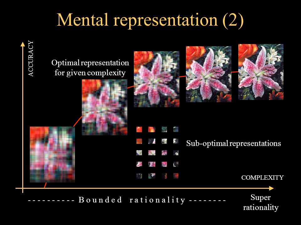 Mental representation (3) COMPLEXITY UTILITY Agents maximize: UTILITY = ACCURACY – COMPLEXITY COST accuracy complexity cost