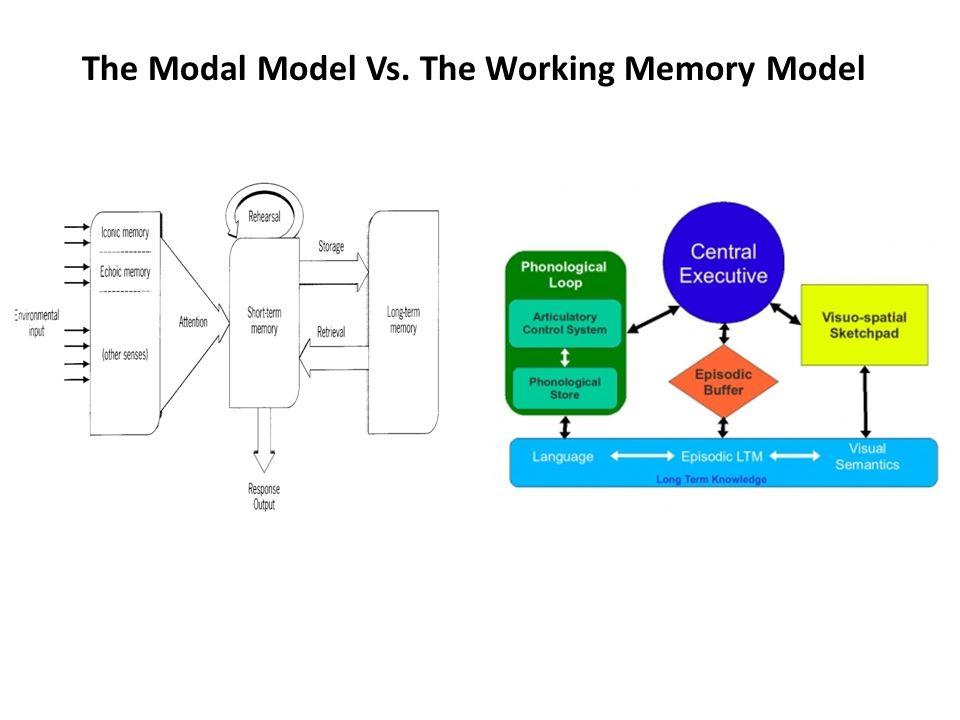 The Modal Model Vs. The Working Memory Model
