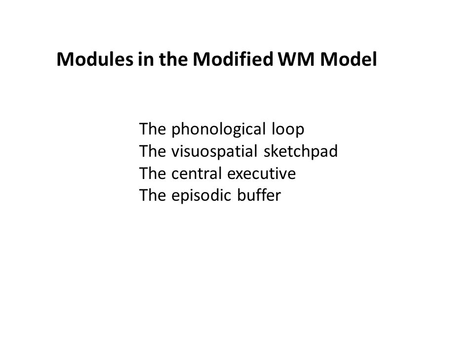 The phonological loop The visuospatial sketchpad The central executive The episodic buffer Modules in the Modified WM Model