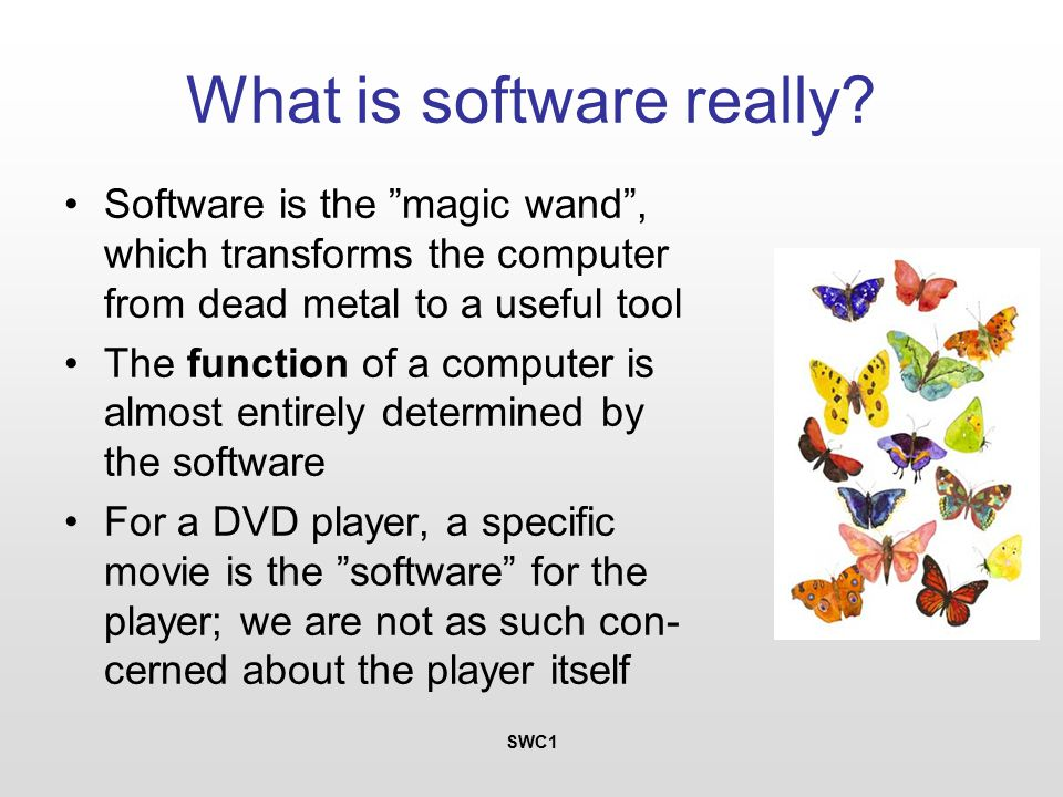 SWC1 What is software really.