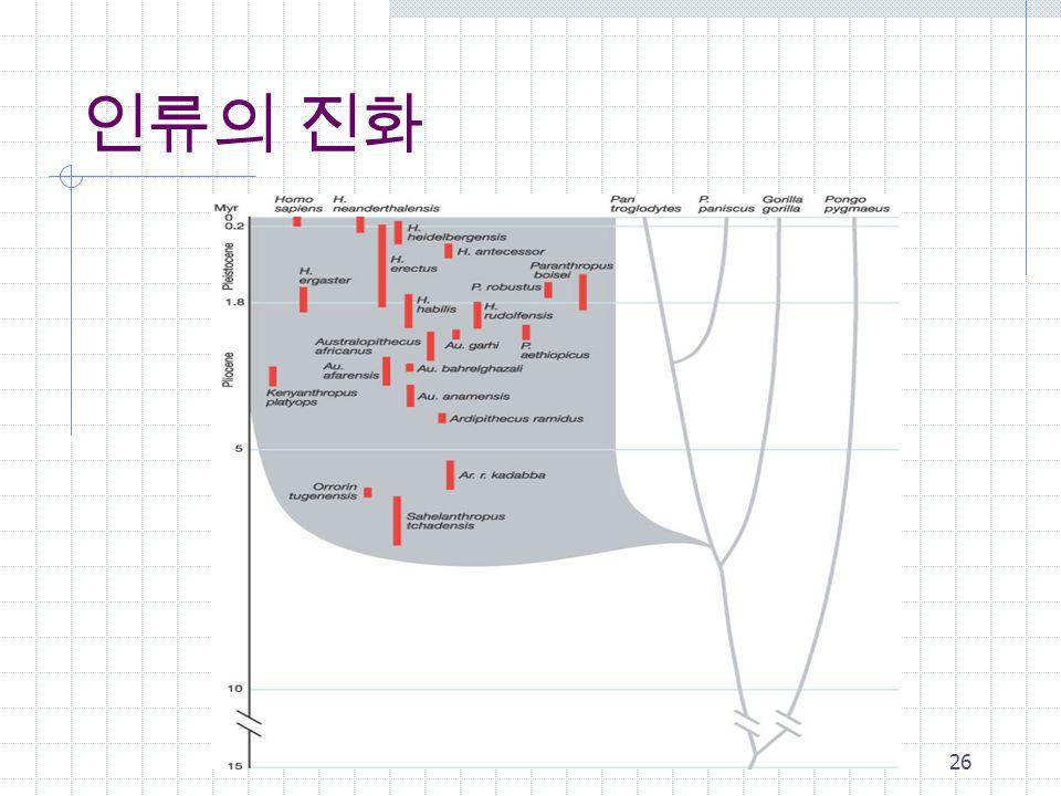 Introduction to AI25 뇌의 용량
