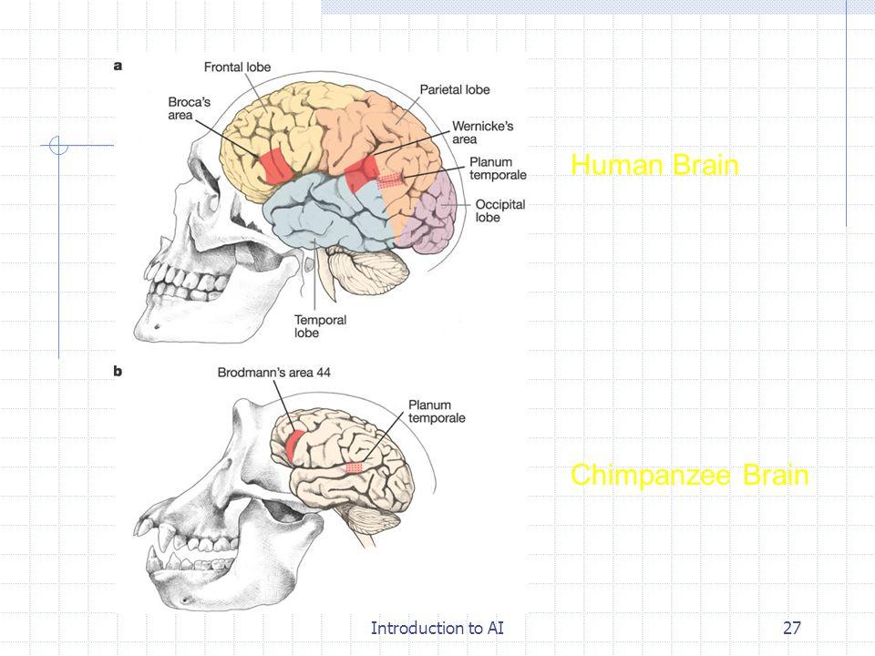 Introduction to AI26 인류의 진화