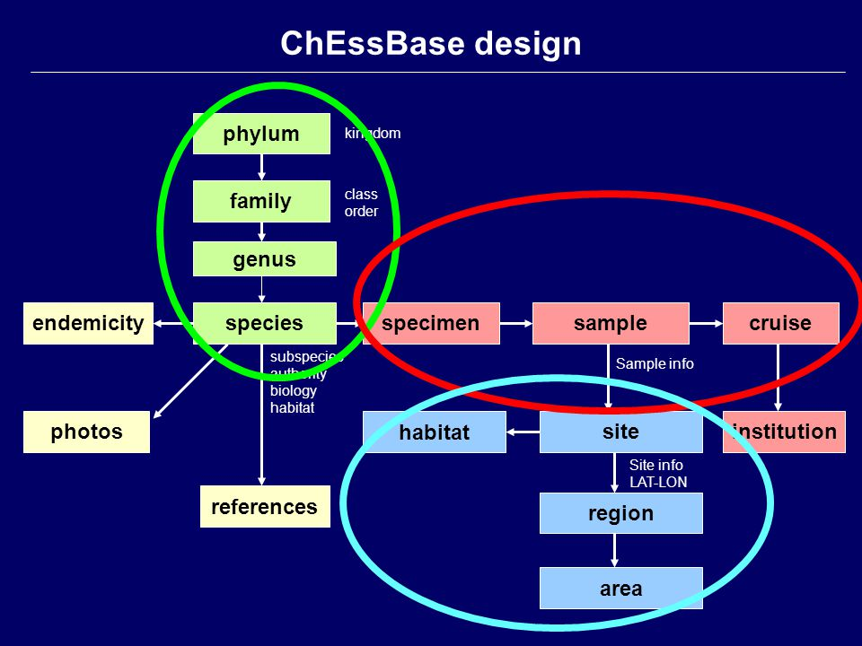 area phylum family genus speciesendemicityspecimensamplecruise references photossite region institution habitat ChEssBase design kingdom class order s