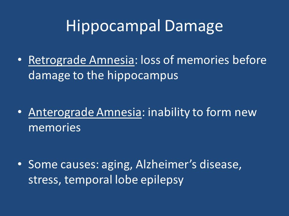 Hippocampal Damage Retrograde Amnesia: loss of memories before damage to the hippocampus Anterograde Amnesia: inability to form new memories Some caus